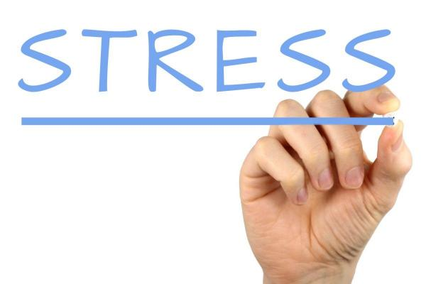 The dimensions of the organizational stress